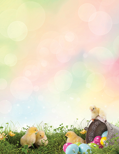 Easter Chicks Letterhead 80CT