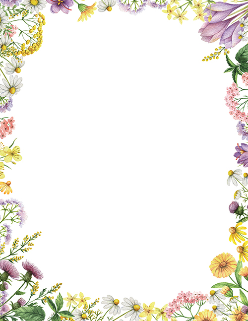Flower Meadows Letterhead 80CT