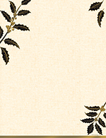 Golden Metallic Holly Letterhead 40CT