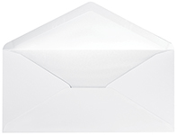 White DL Envelope 25CT