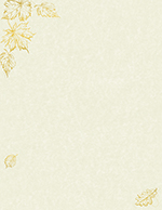 Gold Foil Parchment Leaves Foil Letterhead 40CT