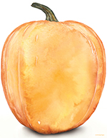 Big Pumpkin Lh80