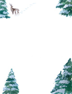 Forest Scene  Hand Illustrated Holiday Letterhead 80 CT
