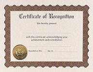 Recognition Stock Certificate 6CT