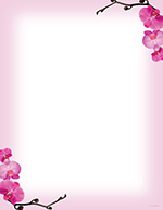 Pink Orchids Letterhead 80CT