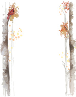Fall Birch Hand Illustrated Letterhead 80 CT